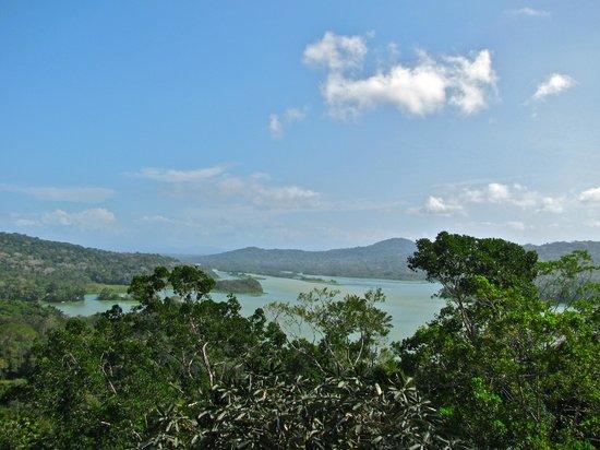 Gamboa Rainforest Resort Aerial Tram Tour: Platform view