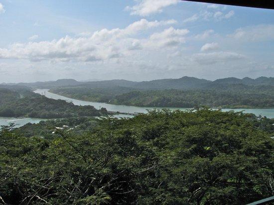 Gamboa Rainforest Resort Aerial Tram Tour: View from the platform at Gamboa