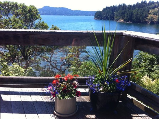 Arbutus Cove Guesthouse: View from deck outside our room