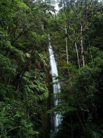 Kosnipata Valley: Manu waterfalls