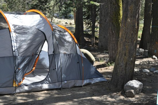 Lodgepole Campground: Setting up Camp