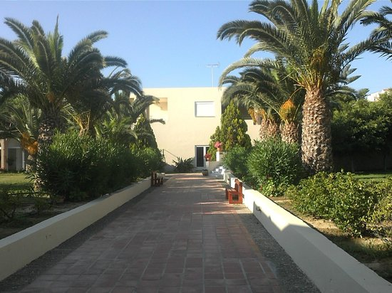 Hotel Eleftheria : ΚΗΠΟΣ