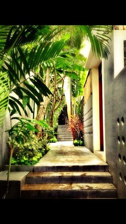 Path to the lobby from the villa