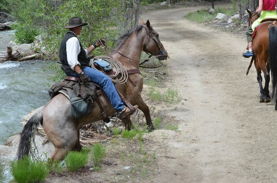 Mt Princeton Riding Stables & Equestrian Center : Mike coming out of Chalk Creek