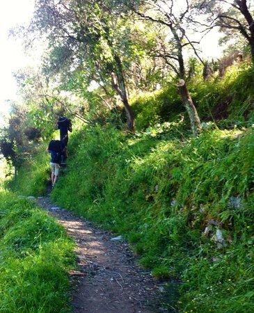 Maremesco B&B: Hiking to where our hosts park their car!