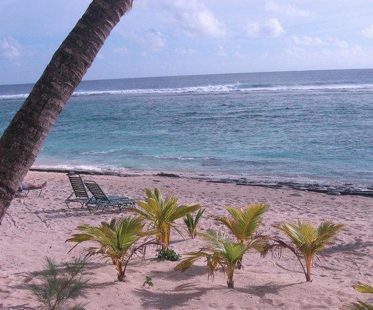 The Edgewater Resort & Spa: Beachfront view at The Edgewater resort, Rarotonga