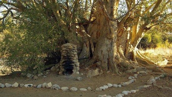 "Tsauchab River Camp: The ""bathroom"""