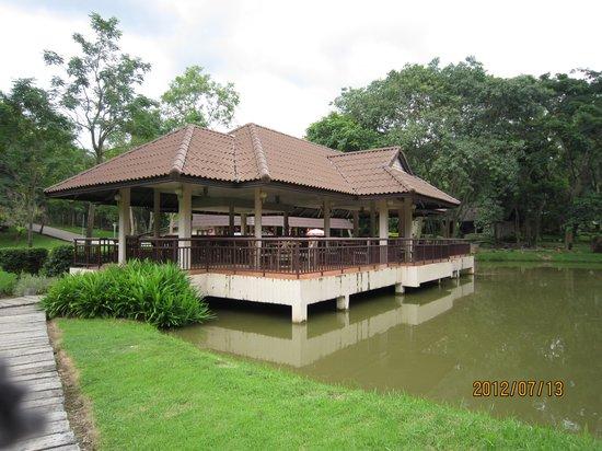 Doi Pha Hom Pok National Park: 食事できる東屋