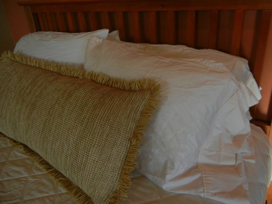 Crescent Moon Inn: Luxurious PLASTIC Raffia Pillow!
