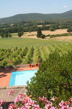 Relais Borgo di Toiano: view of pool and surrounding vineyards from breakfast terrace