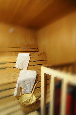 Hotel Barance: sauna