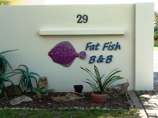 Fat Fish B&B: Fat Fish Bed and Breakfast