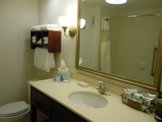 Hampton Inn Charleston/Mt. Pleasant-Patriots Point: Bathroom