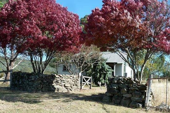 The Folly Ballandean: Outside of the Ironbark Hut