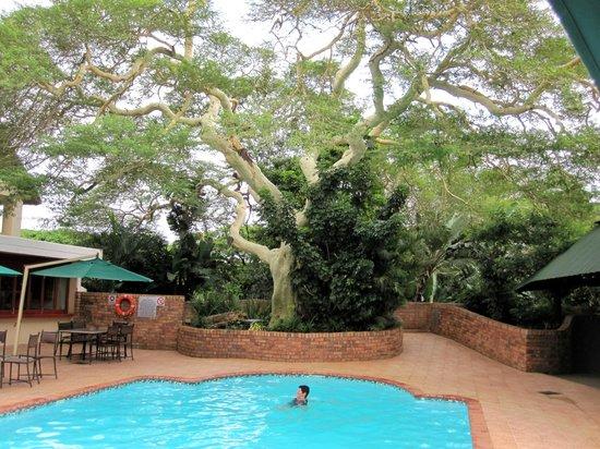 Protea Hotel Hluhluwe & Safaris: Poolbereich