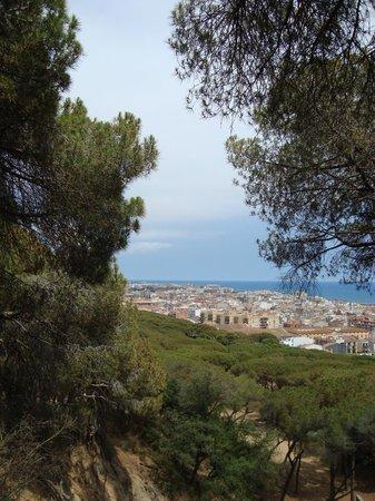 Parque Dalmau: Dalmau Park, uitzicht over Calella