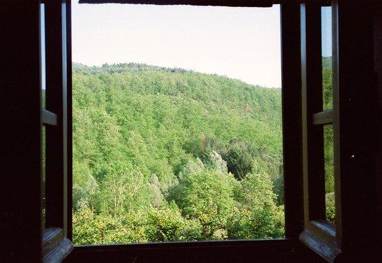 Agriturismo Ca de Carlicchi: Vista panoramica dalla camera