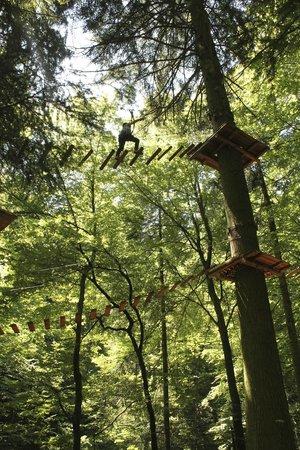 Seilpark Interlaken: High ropes course