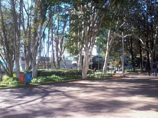 Centro de Convivencia Cultural - Arena Theater