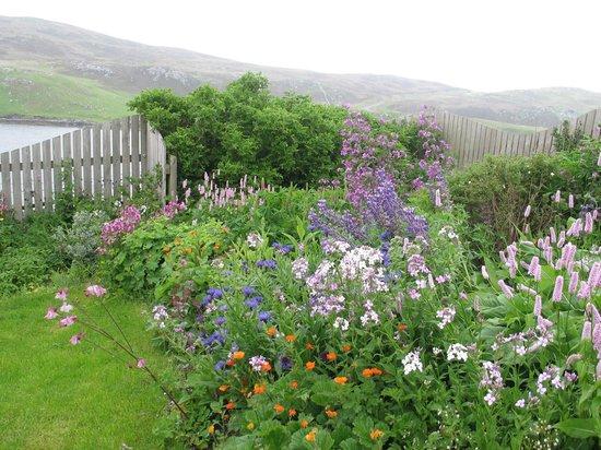Vadsdal B&B: Beautiful garden at Vadsdal