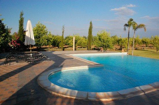 Riad Bledna : la piscine et le jardin