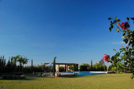 Riad Bledna: le jardin