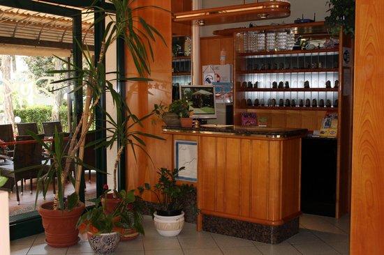 Hotel Eden: Reception