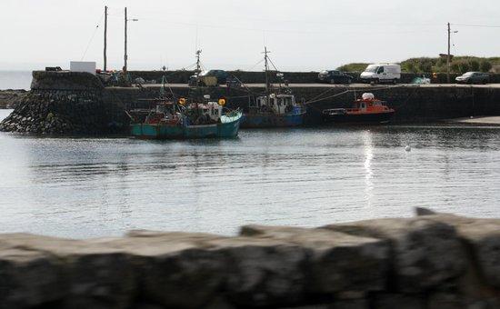 Carraig Nua Farmhouse B&B: Kilbaha harbor