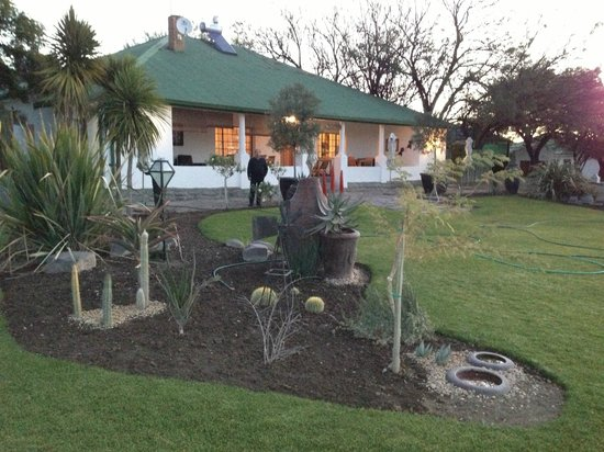 Olive Grove Guest Farm: Reception & Front gardens