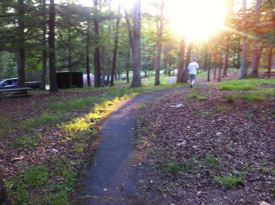 Caledonia State Park : Camp sites