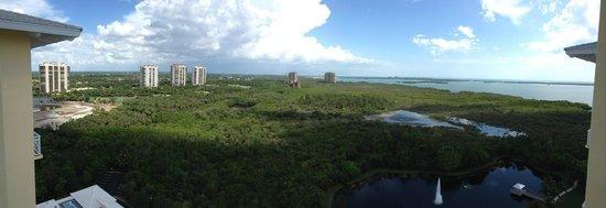 Hyatt Coconut Plantation: 18th floor looking south