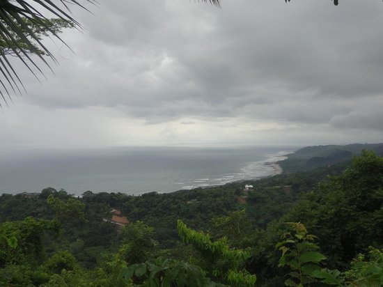 Star Mountain Jungle Lodge: The view at the peak of the jungle hike