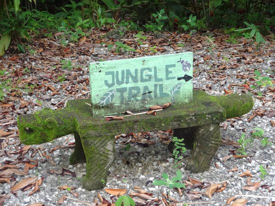Star Mountain Jungle Lodge: Jungle trail sign
