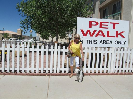 La Quinta Inn & Suites Gallup : The dog walk area