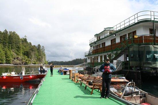 Langara island haida gwaii queen charlotte islands for Langara fishing lodge
