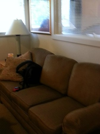 Bent Creek Golf Village : Couch - pull out sofa
