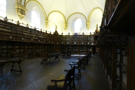 Universidad de Salamanca: The library, the best part of the interior