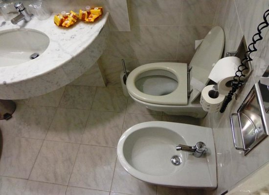 Best Western Hotel Moderno Verdi : Hard to reach the toilet seat