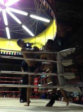 Patong Stadium Muay Thai Gym : Match in Progress