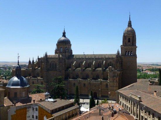 Scala Coeli Torres de la Clerecia: View of new cathedral