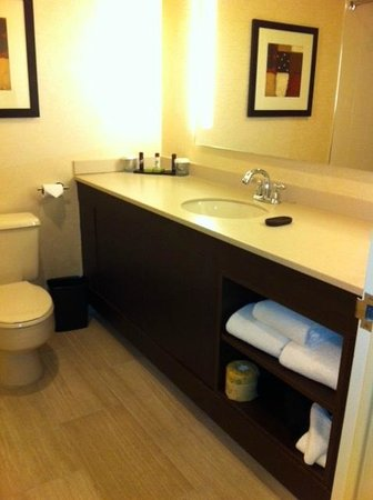 Embassy Suites North Shore / Deerfield: Bathroom large vanity