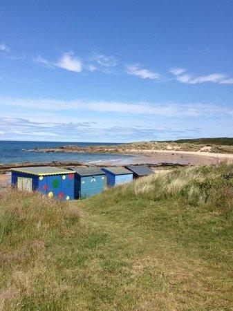 Hopeman, UK: east beach and daisy rock. by Calum