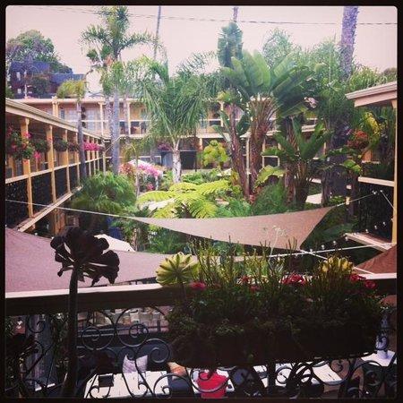 Holiday Inn Laguna Beach : tropical Courtyard