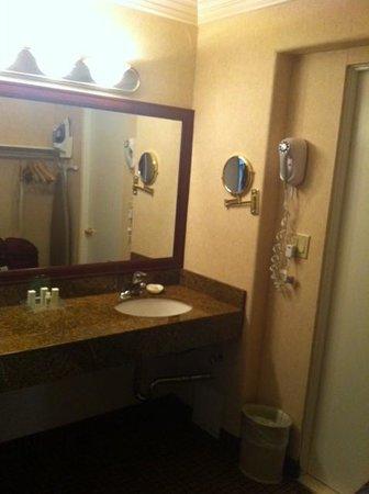 Holiday Inn Laguna Beach : Clean bath Room 15