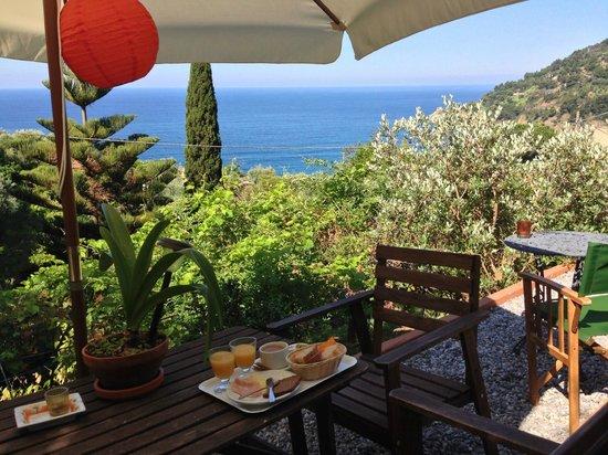 Hotel Villa Belvedere : A view from the garden