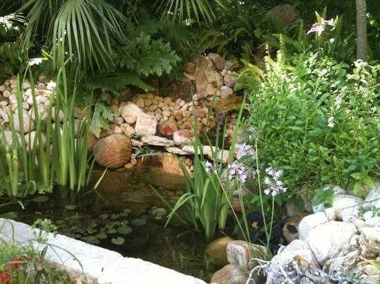 Residence Veles Plage: jardin