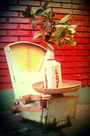 Mango Tree Hostel Bar: Peace, love, live and laugh Vintage Scale