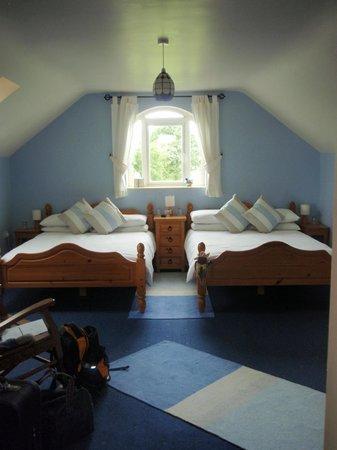 Carrigbyrne Lodge: Twin room