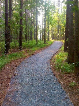 Chattahoochee Bend State Park: Pebble trail to walk-in camping spots