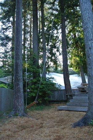 Tribune Bay Campsite: .
